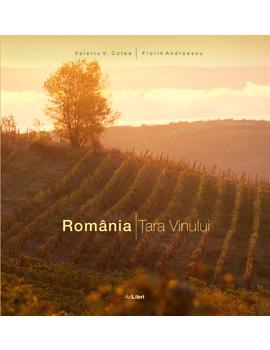 Romania Tara Vinului